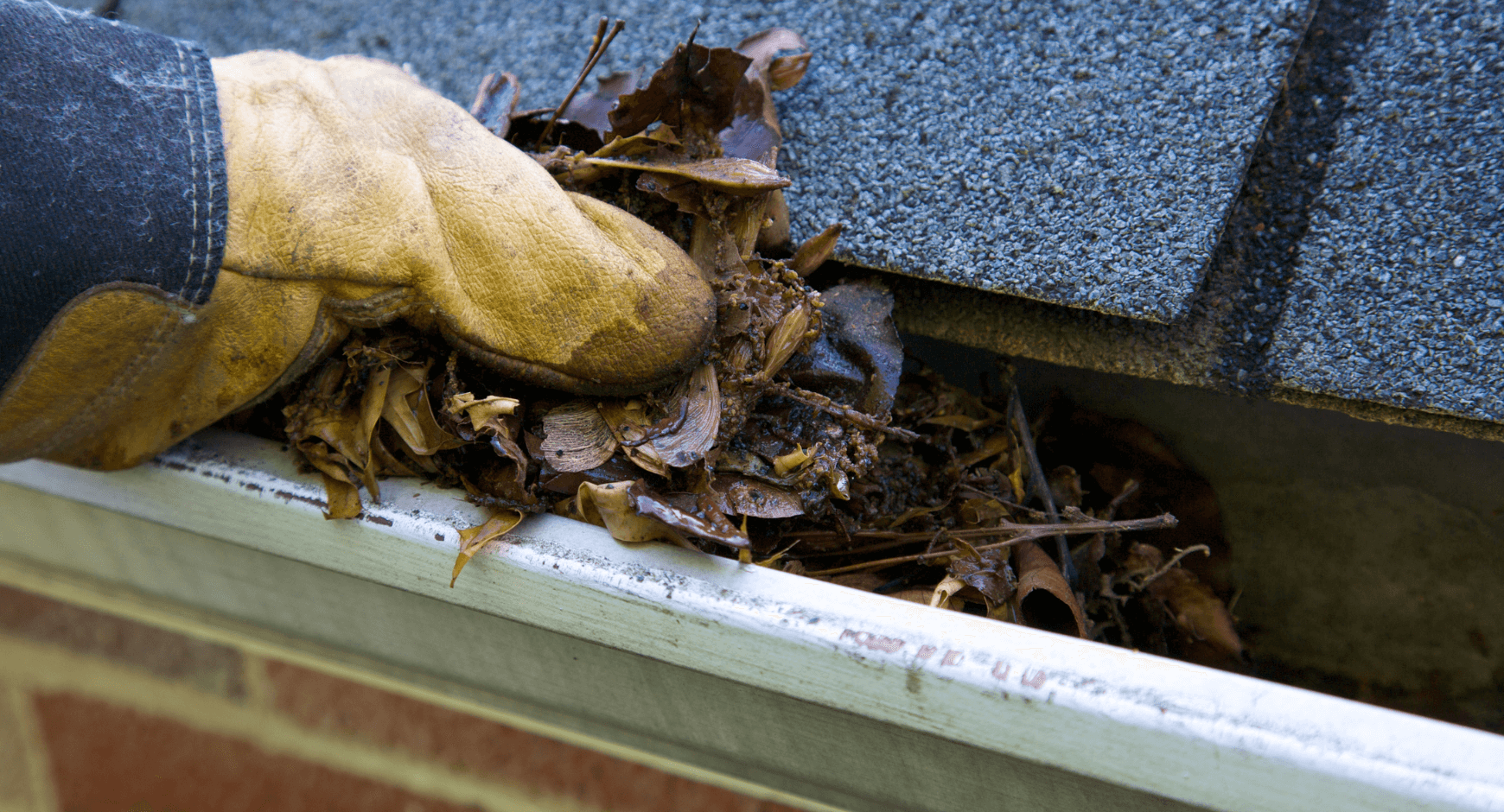 Image of the solution to clogged gutters